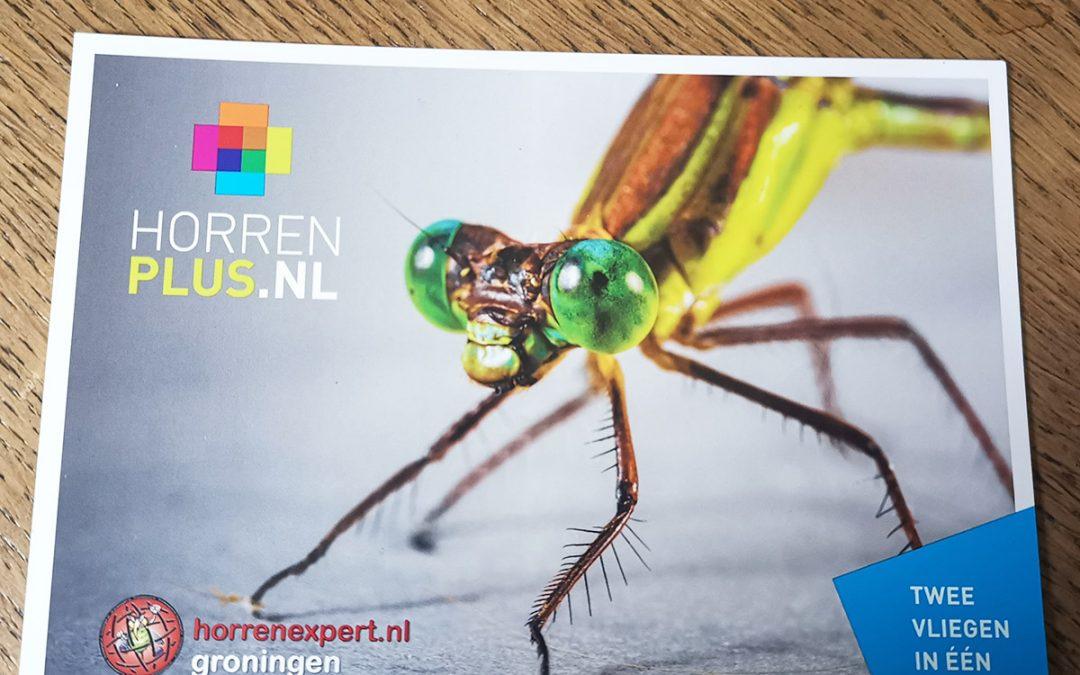Insecten buiten de deur houden met de horren van horrenplus